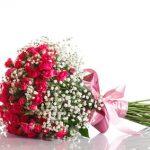 24 roses et soupirs de bébé
