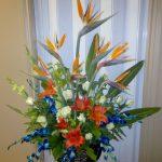 Oiseaux du paradis, roses, lys et orchidées