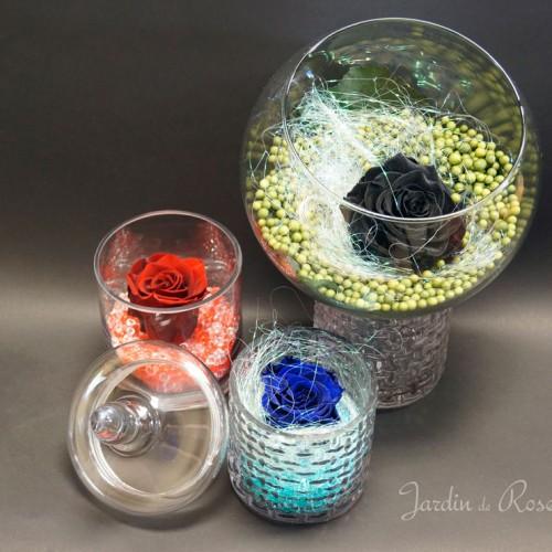 Roses éternelles colorées dans un vase