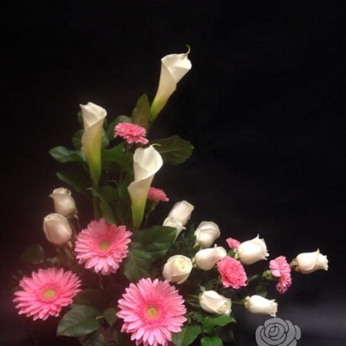 Lys calla blancs, roses blanches, oeillets