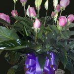 Lys de paix et roses