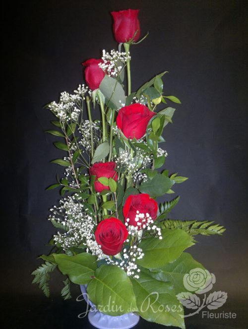 6 roses rouges