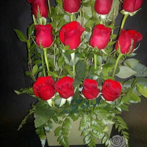Douzaine de roses rouges