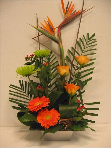 Oiseau du paradis anastasia gerbera roses oranges et tigerhepecium
