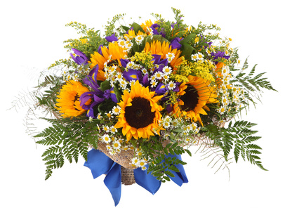 9 tournesol, iris et asters blancs